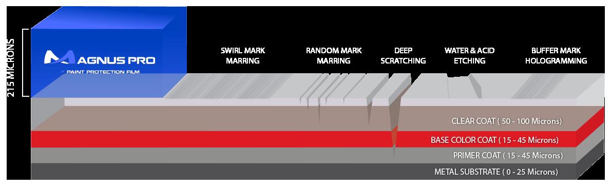 Magnus Pro Paint Protection Film Layer